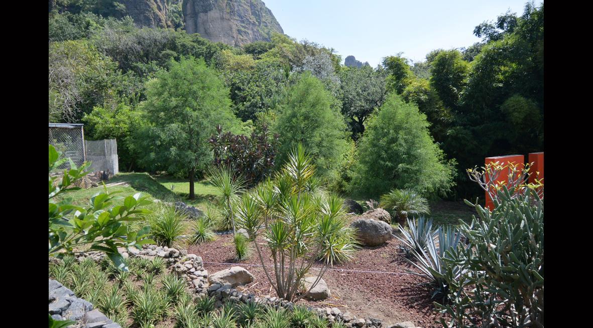 Pozo Del Camino Property For Sale